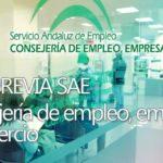 Cita previa Servicio Andaluz de Empleo | SAE