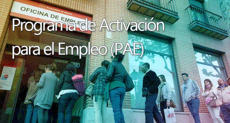 Programa de Activación para el Empleo (P.A.E.)